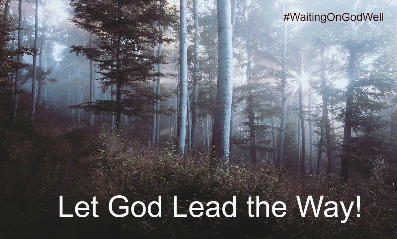 woods-WOGW let God lead