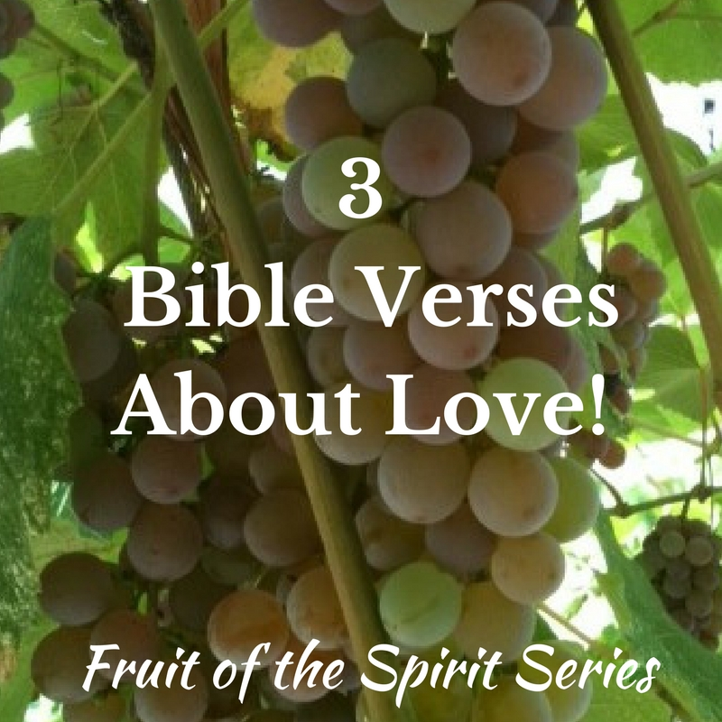 Copy of Fruit of the Spirit Series